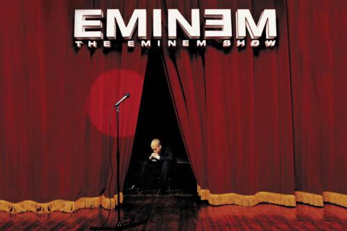 The Eminem Show Art Wall Indoor Room Outdoor Poster POSTER 24x36