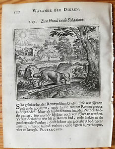 Marcus-Gerards-Fabels-Animals-Dog-crossing-a-river-1617