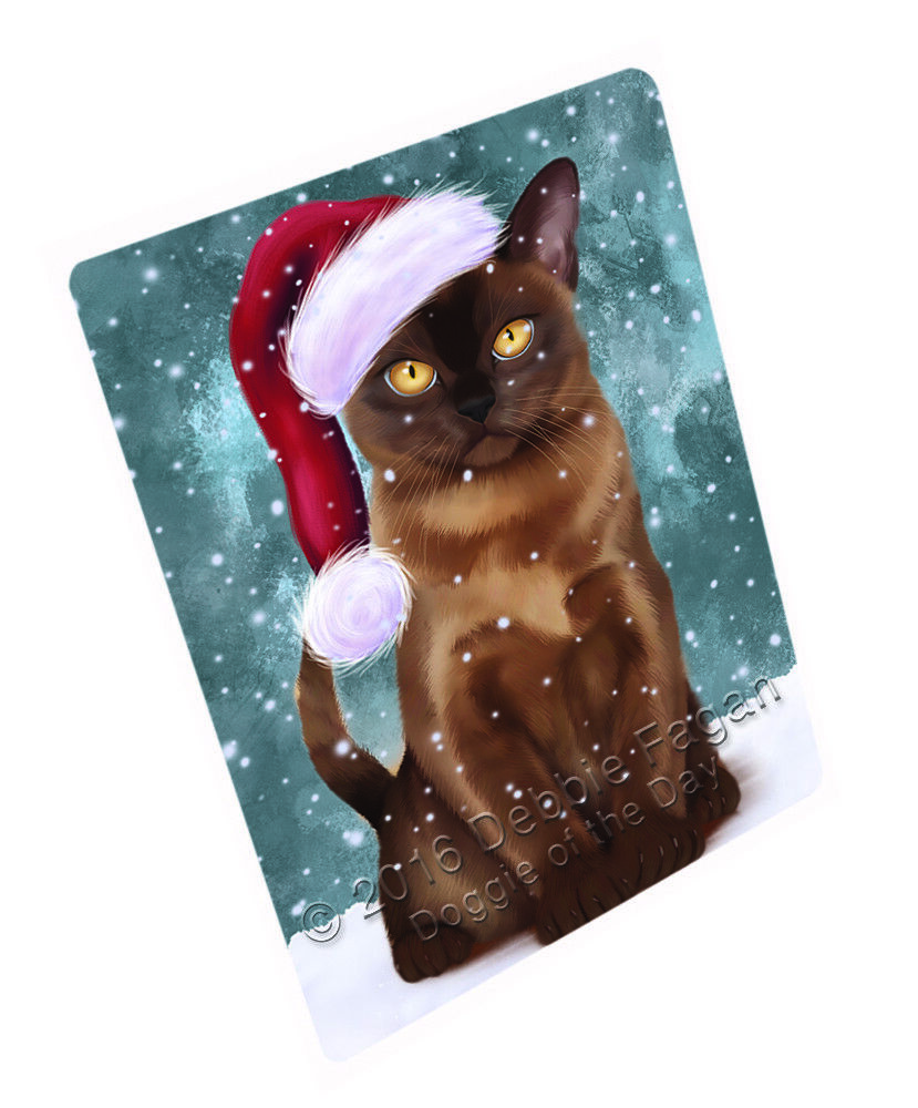 Let it Snow Christmas Holiday Burmese Cat Woven Throw Sherpa Blanket T134