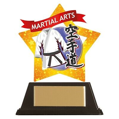 Free Engraving Mini Star Karate Trophy