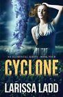 Cyclone by Larissa Ladd (Paperback / softback, 2014)