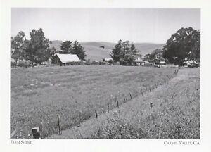 Postcard-034-1950-039-s-Scene-of-Cluster-of-Farm-Bldgs-034-Carmel-Valley-CA-A46-1