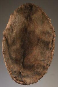 Bouclier-en-peau-de-cochon-papuan-shield-art-du-sepik