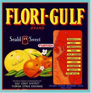 Oak Hill Florida Turnbull #1 Canoe Orange Citrus Fruit Crate Label Art Print