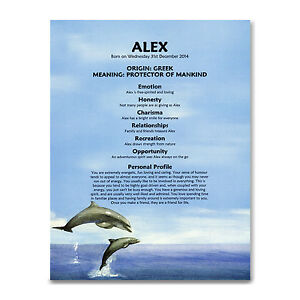 FIRST-NAME-MEANING-PRINT-Personalised-Gift-13th-16th-18th-21st-Birthday-Dolphins