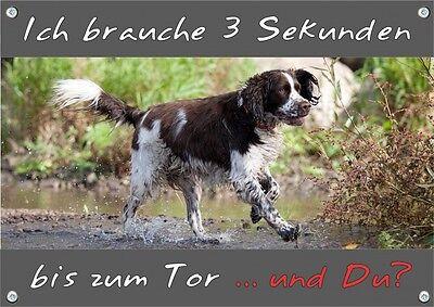 Billiger Preis English Springer Spaniel - Hunde Warnschild - Stabiles Metallschild - Top Qualit Die Nieren NäHren Und Rheuma Lindern