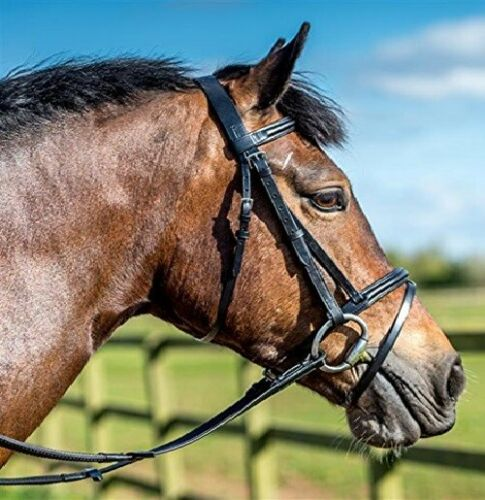 Full Cob BLACK Only FREE Rubber Reins Leather Bridle Flash Noseband