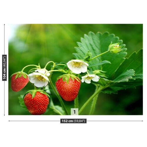 Tulup Fototapete Selbstklebend Einfach ablösbar Mehrfach klebbar Erdbeer Grün