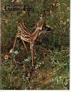 Details about Texas Game and Fish Magazine April 1963 Spotted Bundles Deer  World