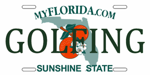 FLORIDA  PERSONALIZED License Plate FREE SHIPPING!!