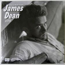 James Dean ™ 2014 18-Month Wall Calendar - New Sealed