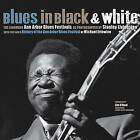 Blues in Black and White: The Landmark Ann Arbor Blues Festivals by Michael Erlewine (Paperback, 2010)