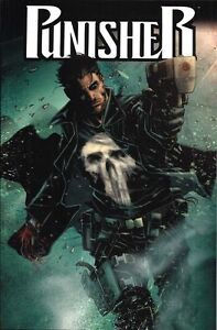 PUNISHER-2012