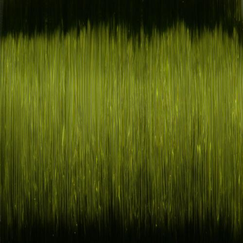 C-TEC MONO X Poisson Carnassier Green zielfisch ficelle de SPRO