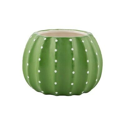 sass and belle cactus plant pot quirky/fun/home/rooms free p+p