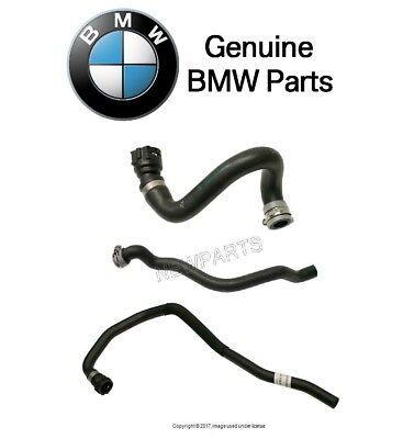 For BMW E46 M3 01-06 3.2 L6 Lower Radiator Coolant Hose CHR0376R Rein Automotive