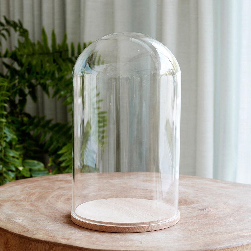 Cúpula de vidrio mínima 31cm con Micro 4fun Blanco Cálido Luces navideñas Batería por luces 4fun Micro bb9e4e