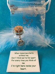 Pet-Memorial-Pet-Hamster-Ashes-Urn-In-loving-memory-Pet-Fur-Ashes