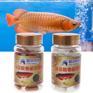 60x-aquaruium-bacteries-nitrifiantes-capsules-pour-eau-douce-et-marin-d-039-eau