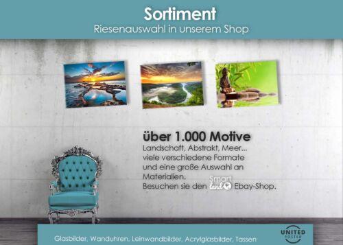Wandbilder XL 50 x 100 cm EG4100502154 PALMEN MIAMI LILA LANDSCHAF HD GlasBild