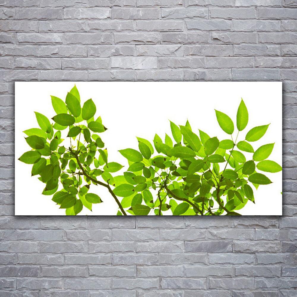Photo sur toile Tableau Image Impression 120x60 Floral Branches Feuilles