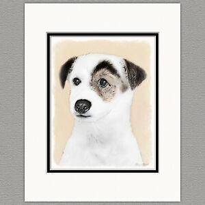Parson-Jack-Russell-Terrier-Smooth-Coat-Original-Art-Print-8x10-Matted-to-11x14