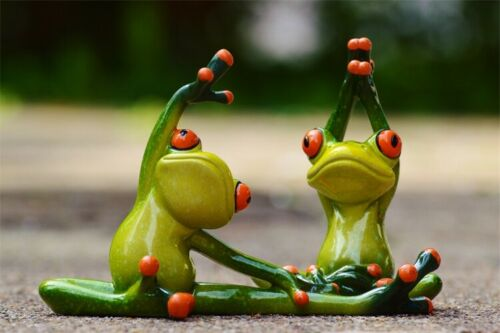 Yoga Frog Art Decor Painting Modern Poster Hang Mural Canvas Print Photo Cartoon