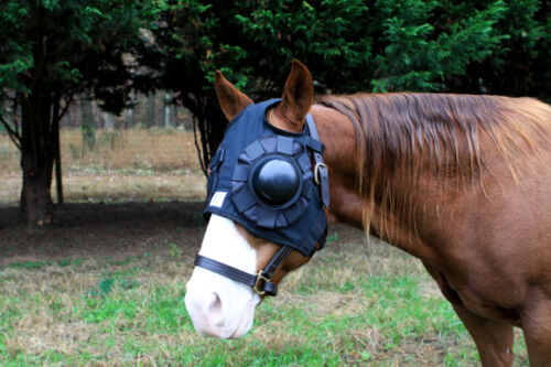 Treat left or right eye with 1 hood Small Equine eye saver INTERCHANGEABLE