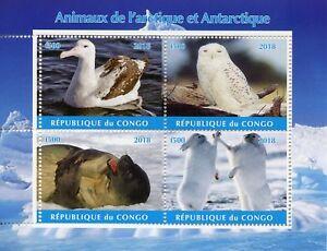 Congo-2018-CTO-ARCTIC-amp-ANTARTICO-ANIMALI-4-V-M-S-II-GUFI-sigilli-birds-stamps