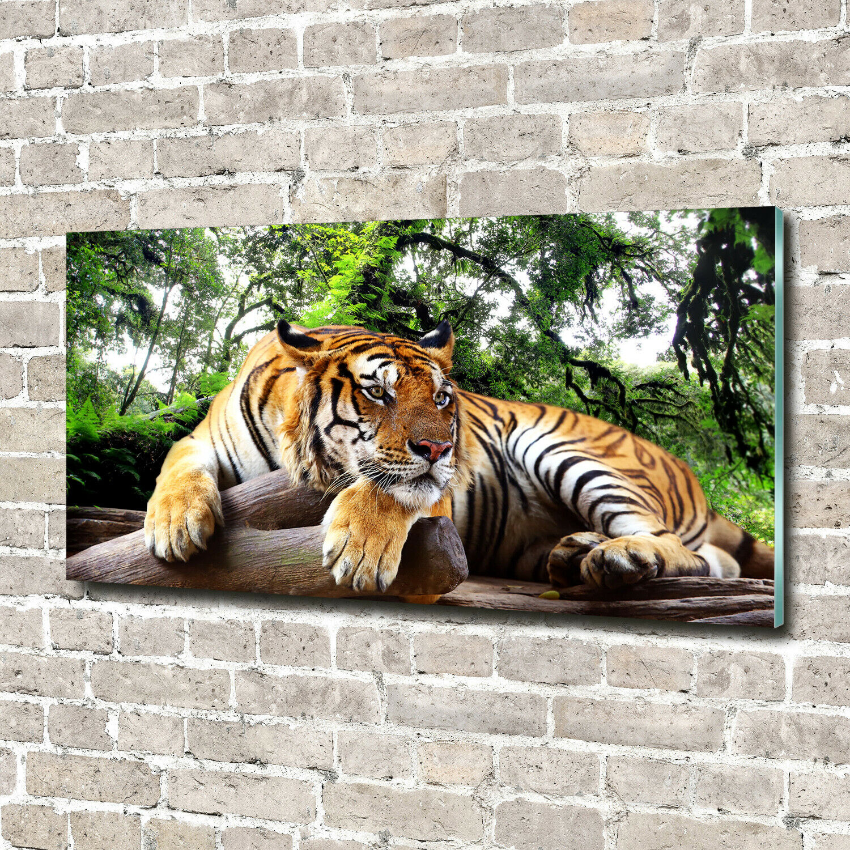 Wandbild aus Plexiglas® Druck auf Acryl 140x70 Tiere Tiger Felsen