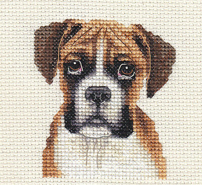 RED BOXER PUPPY, DOG ~ Full counted cross stitch kit with all materials
