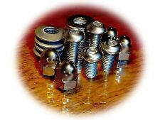 Two Way License Plate Scooter Bolts/Screws (4) • Stainless • Cushman & others