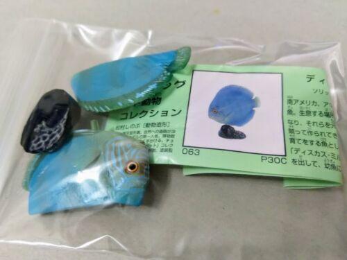 Furuta Kaiyodo Choco egg animal figure Collection Blue Discus fish