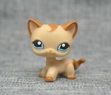 Littlest Pet Shop RARE Brown Short Hair Cat Kitty Blue Eyes LPS Toy #1024