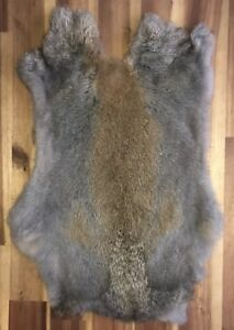 5x-FLINT-Rabbit-Skin-Fur-Pelts-for-animal-training-garments-TR10-LARP