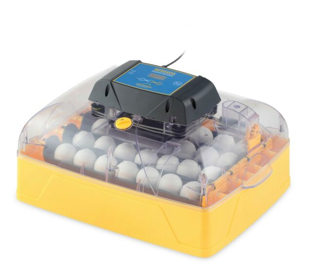 NEW - Brinsea Ovation 28 Advance Incubator - Automatic, Hen, Egg (AF36)