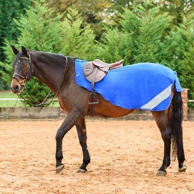 Ideale Per Cavallo Wow Esercizio Foglio-in Pile Sparkle Diamante Equestrian Riding-mostra Il Titolo Originale Prestazioni Superiori
