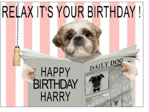 DOG ON TOILET FUNNY COMIC PERSONALISED BIRTHDAY CARD SHIH TZU STAFFY LAB /& PUG
