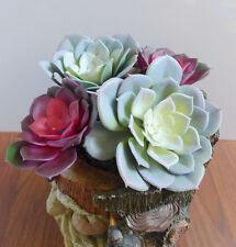 Artificial Plastic Succulents Snow Lotus Set of  4 (2 Middle, 2 Big)