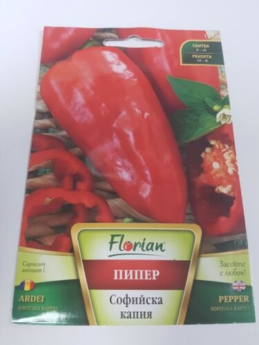 Sofiyska Kapiya rouge big huge Poivron Bulgarie légumes 2 g Graines