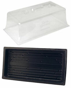 "Wheatgrass Cloning Trays 10"" x 20"" Propagation Kit Vented Humidity Dome + Tray"