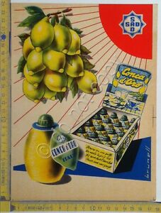 Stampa-pubbicitaria-Conca-d-039-Oro-SAD-anni-039-60-illustrata-da-Brunell