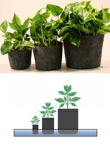 10 Root Pouch gris 4L Pot Géotextile Smart grow Pot guerilla jardin indoor fleur