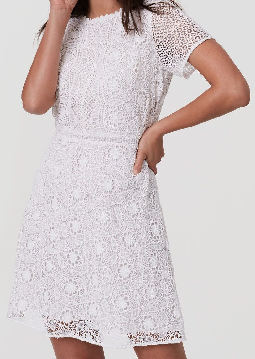 Ann Taylor LOFT Camellia Lace Dress Größe 0 Regular, 10 Petite, 12 Petite
