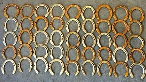 Nails pulled and shoes flattened out 20 Horseshoes steel