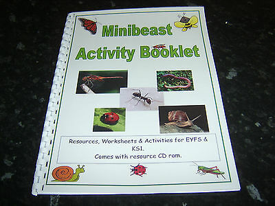 BUGS minibeast themed resource booklet worksheets ideas childminding EYFS KS1