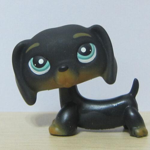 Littlest Pet Shop Animal LPS Loose Toy #325 Chien Teckel Black Dachshund Dog BB