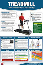 TREADMILL WORKOUT Cardio Fitness Professional Gym Wall Chart Poster