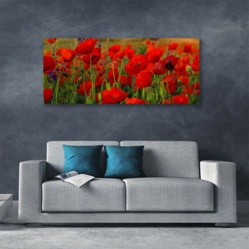 Leinwand-Bilder Wandbild Canvas Kunstdruck 125x50 Mohnblumen Pflanzen