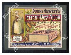 Historic-Iceland-Moss-Cocoa-1890s-Advertising-Postcard